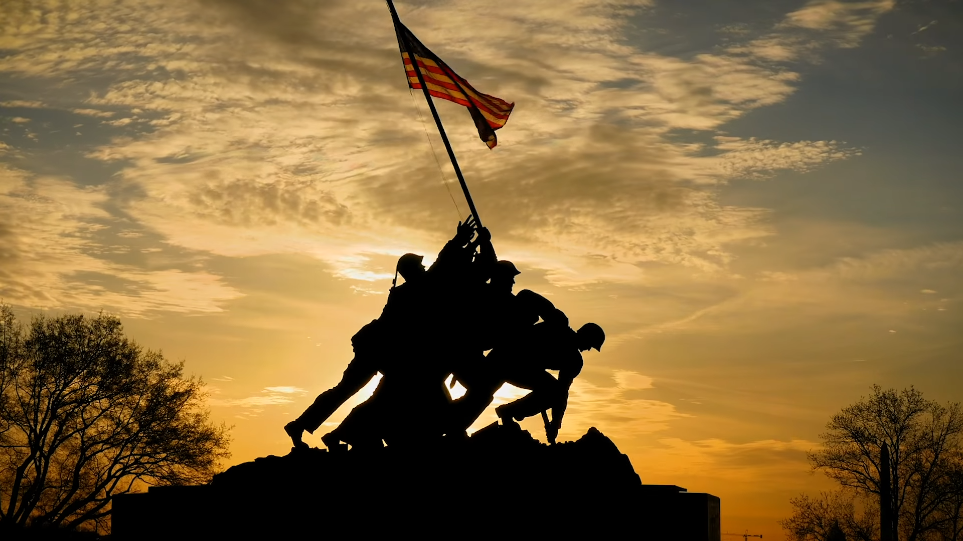 Today is Veterans Day