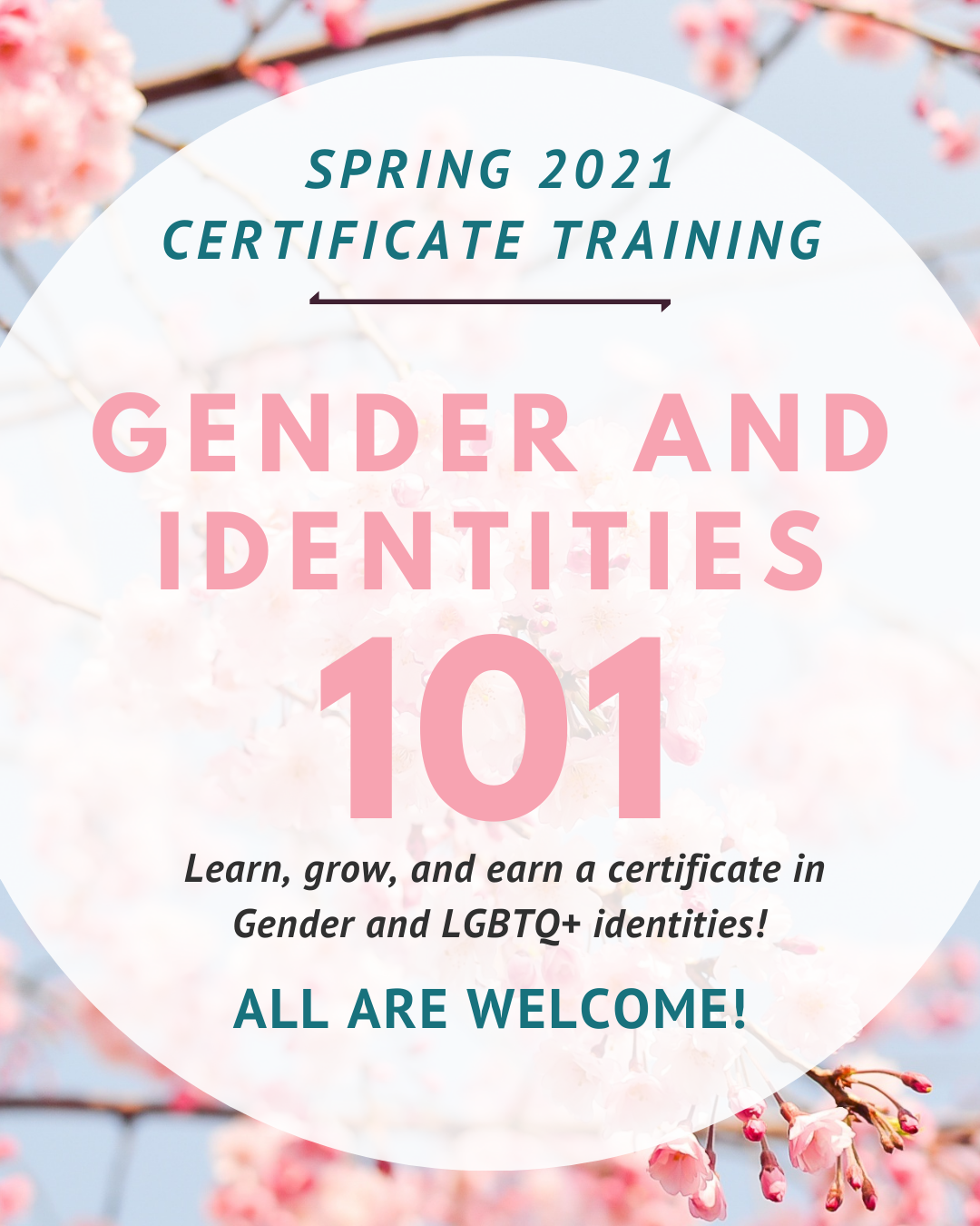 Gender and identities 101